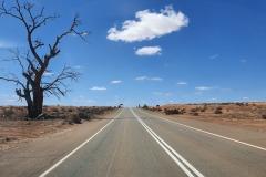 Flinders Run